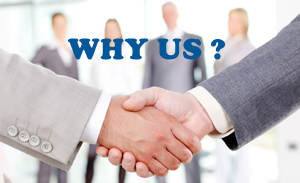 Why Our Auto Transport Service